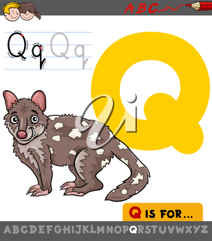 Educational Cartoon Illustration of Letter Q from Alphabet with Quoll Animal Character for Children