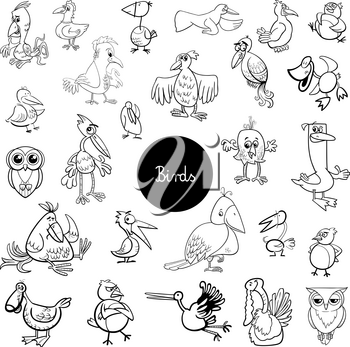 Black and White Cartoon Illustration of Birds Animal Characters Big Collection Coloring Book
