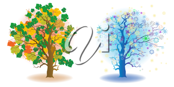 Royalty Free Clipart Image of a Tree in Two Seasons