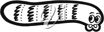 Royalty Free Clipart Image of a Worm