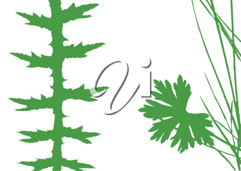 Royalty Free Clipart Image of Herbs