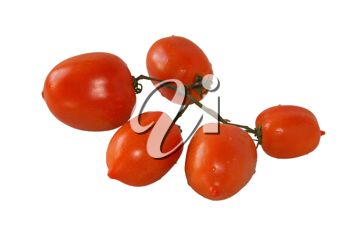 Branch of mature tomatoes on a white background.