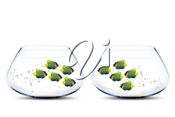 Royalty Free Photo of Two Fishbowls with Anglefish in Both