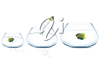 Royalty Free Photo of Fishbowls With Angelfish. One Fish is Jumping out of his Bowl