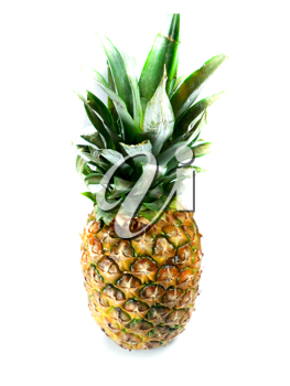 Fresh pineapple isolated over white background