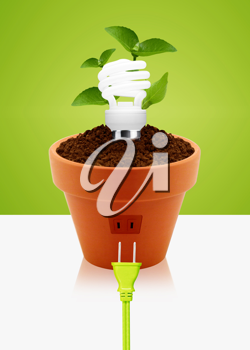 Royalty Free Photo of a Potted Plant With an Energy Saving Light Bulb and a Plug in Outlet on the Side of the Planter