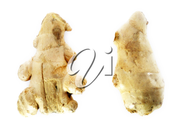 Fresh Ginger root on a white background