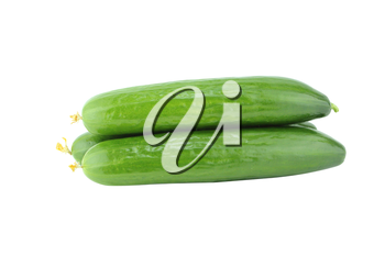 Fresh Cucumber on white background.  with a clipping path