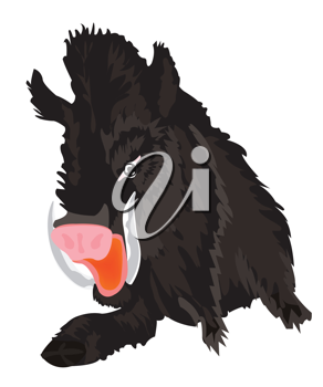 Royalty Free Clipart Image of a Wild Boar