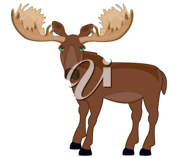 Vector illustration ungulate animal moose with greater horn