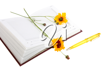Empty open diary, yellow flowers and yellow ball point pen. Close-up. Isolated on white background.