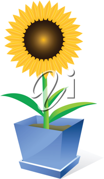 Royalty Free Clipart Image of a Sunflower in a Pot