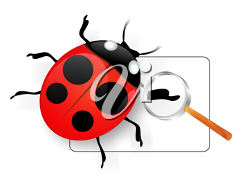 Royalty Free Clipart Image of a Lady Bug Under a Magnifying Glass