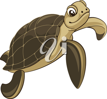 Vector illustration of a sea turtle isolated on white