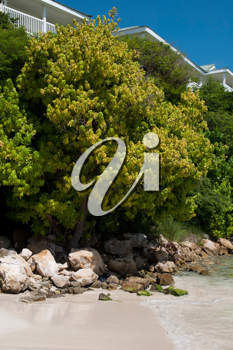 Royalty Free Photo of a Beach in Long Bay in Antigua