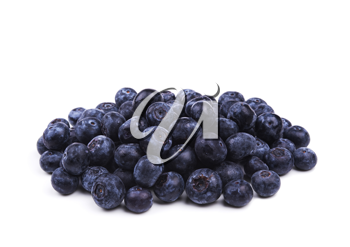 fresh bilberry fruits isolated on white background