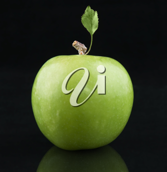 Green fresh Apple with  leaf on  black background
