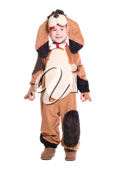 Playful little boy wearing like a dog. Isolated on white
