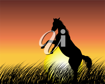 Royalty Free Clipart Image of a Horse Silhouette