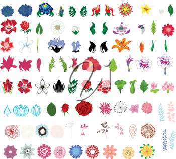 Big collection of flowers. Fully editable vector illustration.