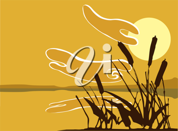 Royalty Free Clipart Image of a Patch of Reeds by a Pond