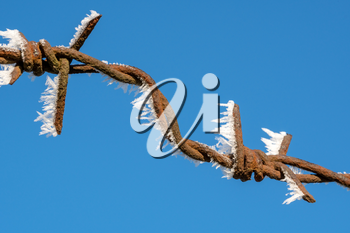 Close-up of barbed wire with ice crystals