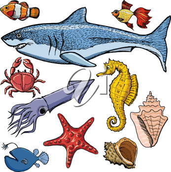 set of sea animals with shark, crab, squid