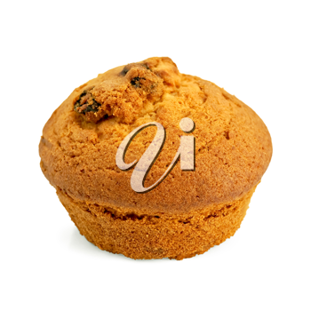 Royalty Free Photo of a Muffin