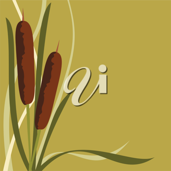 Royalty Free Clipart Image of a Background With a Cattails Border