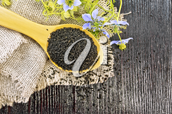 Black cumin seeds in a spoon on sacking, kalingi twigs with blue flowers and green leaves on a wooden board background from above