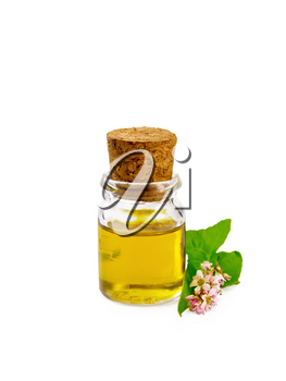 Buckwheat oil in a glass bottle, flowers and buckwheat leaves isolated on white background