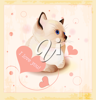 Royalty Free Clipart Image of a Cat Valentine's Day Card