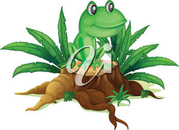 Illustration of a trunk with a frog on a white background