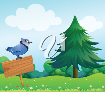 Illustration of a bird above the empty wooden signage
