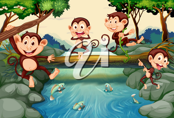 Four monkeys by the river illustration