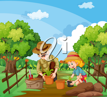 People planting tree in the garden illustration