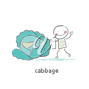 Cabbage and people
