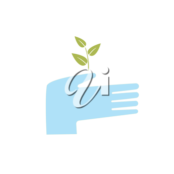 hand holding a sprouting plant and protects it
