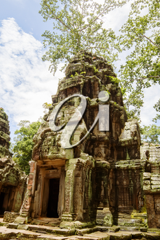 Ancient Ta Prohm or Rajavihara Temple  at Angkor, Siem Reap, Cambodia.