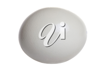 Royalty Free Photo of an Ostrich Egg