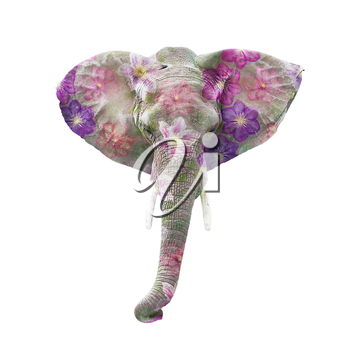 Elephant head with flowers isolated on white background