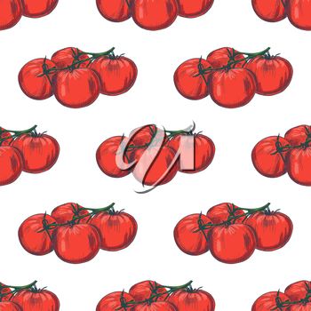 Hand drawn seamless tomato background. Vector pattern