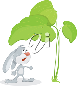 Royalty Free Clipart Image of a Rabbit Under a Big Leaf