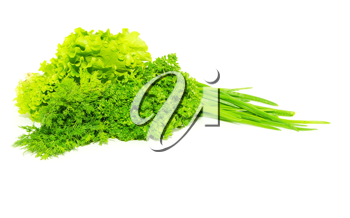 Royalty Free Photo of Onions, Cabbage and Parsley