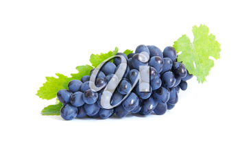Royalty Free Photo of a Bunch of Grapes