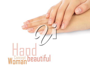 Beautiful female hands