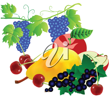 Royalty Free Clipart Image of a Bunch of Fruit