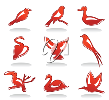 Set of icons on a theme of a bird. A vector illustration