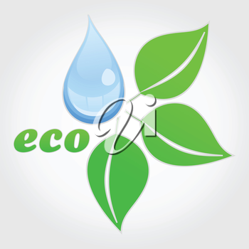 Drop of water and green plant. A vector illustration