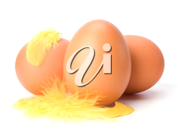 Eggs and feather isolated on white background. Easter decor.